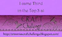 C.R.A.F.T. Challenge #182 Top 3 - 3rd Place