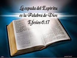 LA BIBLIA ES UN TESORO LEELA