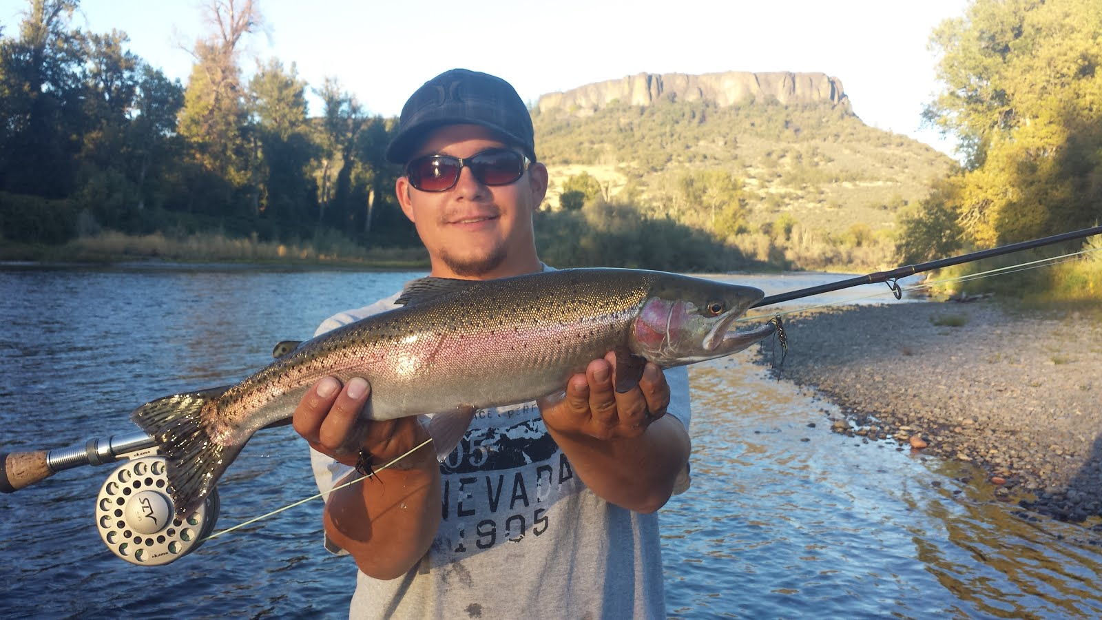 Rogue River Summer Steelhead
