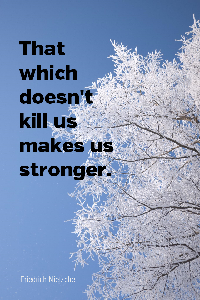 visual quote - image quotation for GROWTH - That which doesn't kill us makes us stronger. - Friedrich Nietzsche