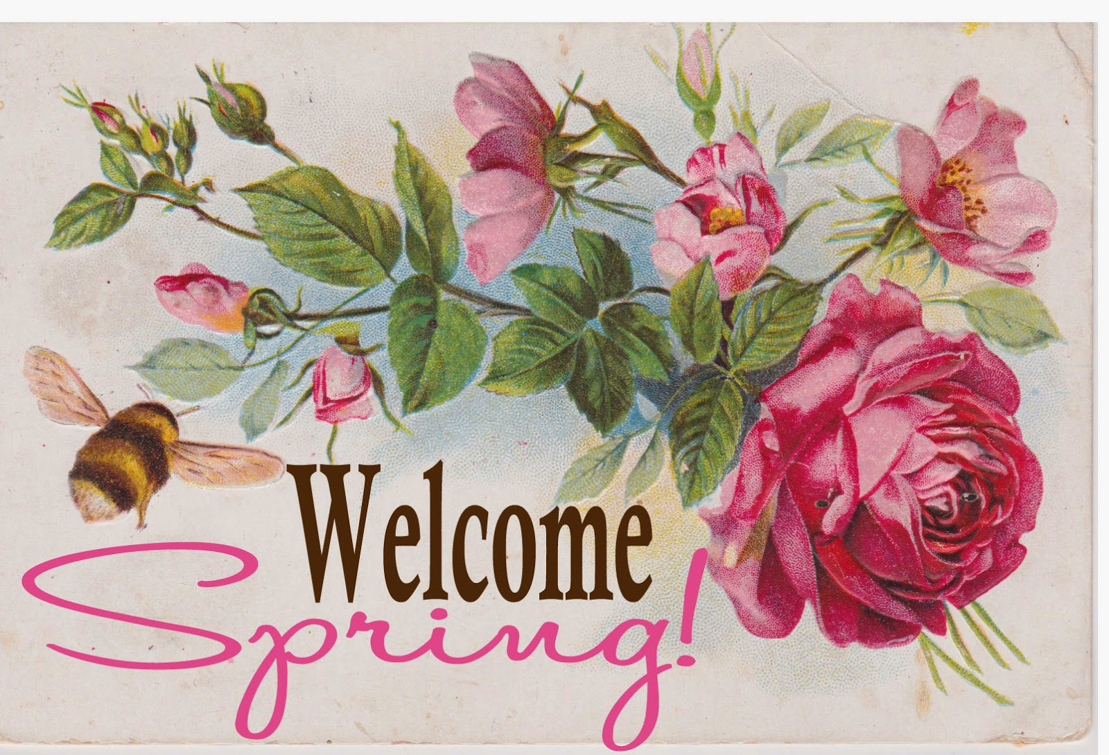 adventures of a busybee welcome spring printable