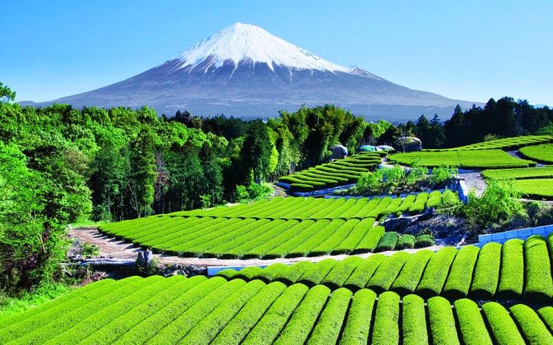 Gunung-Fuji di Jepang