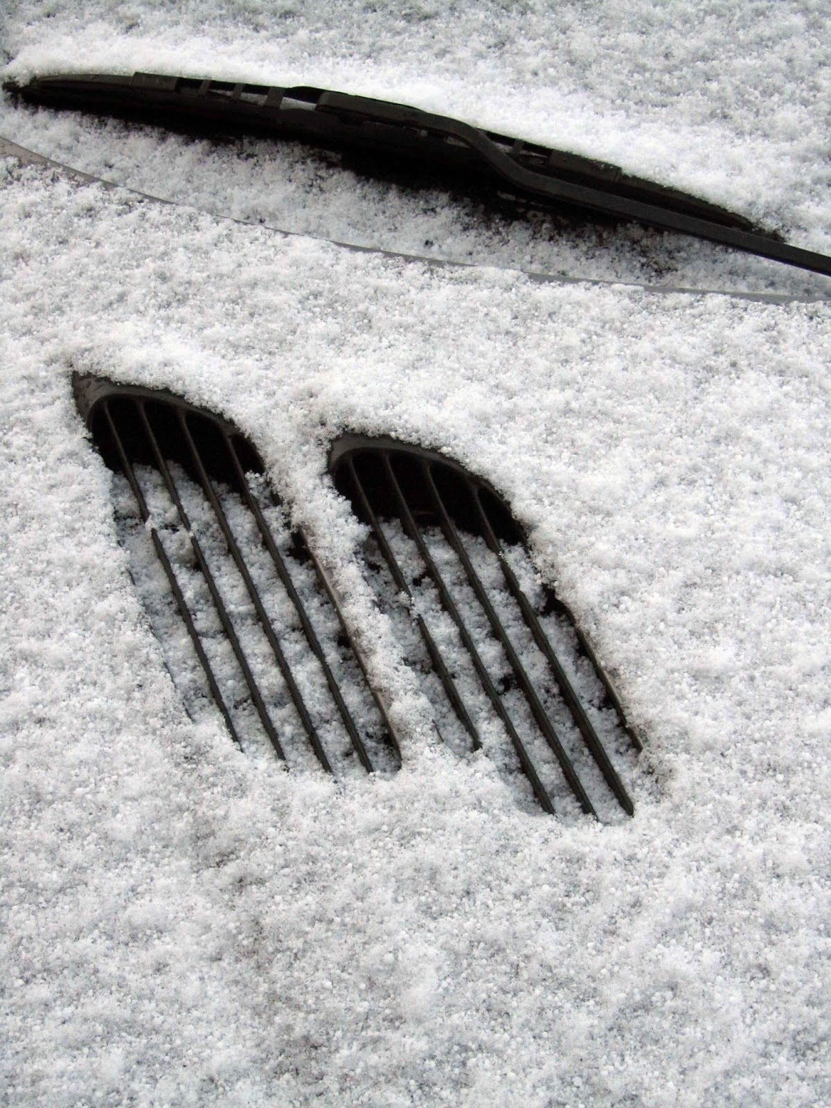 grids of car covered in snow