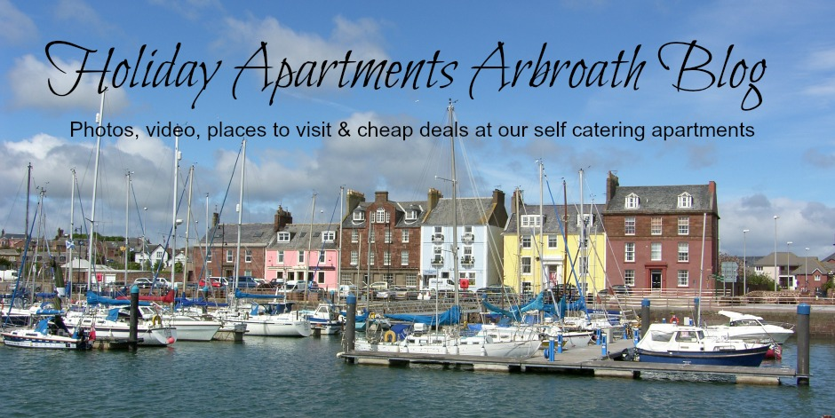 Holiday Cottage Arbroath Scotland