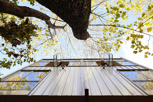 Treehouse by Shed Architecture & Design