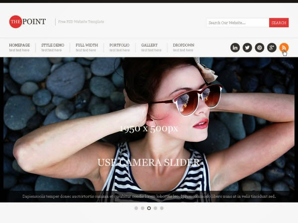 Point Free PSD Website Template