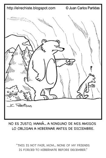 osos hibernacion