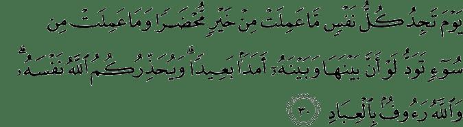 Surat Ali Imran Ayat 30