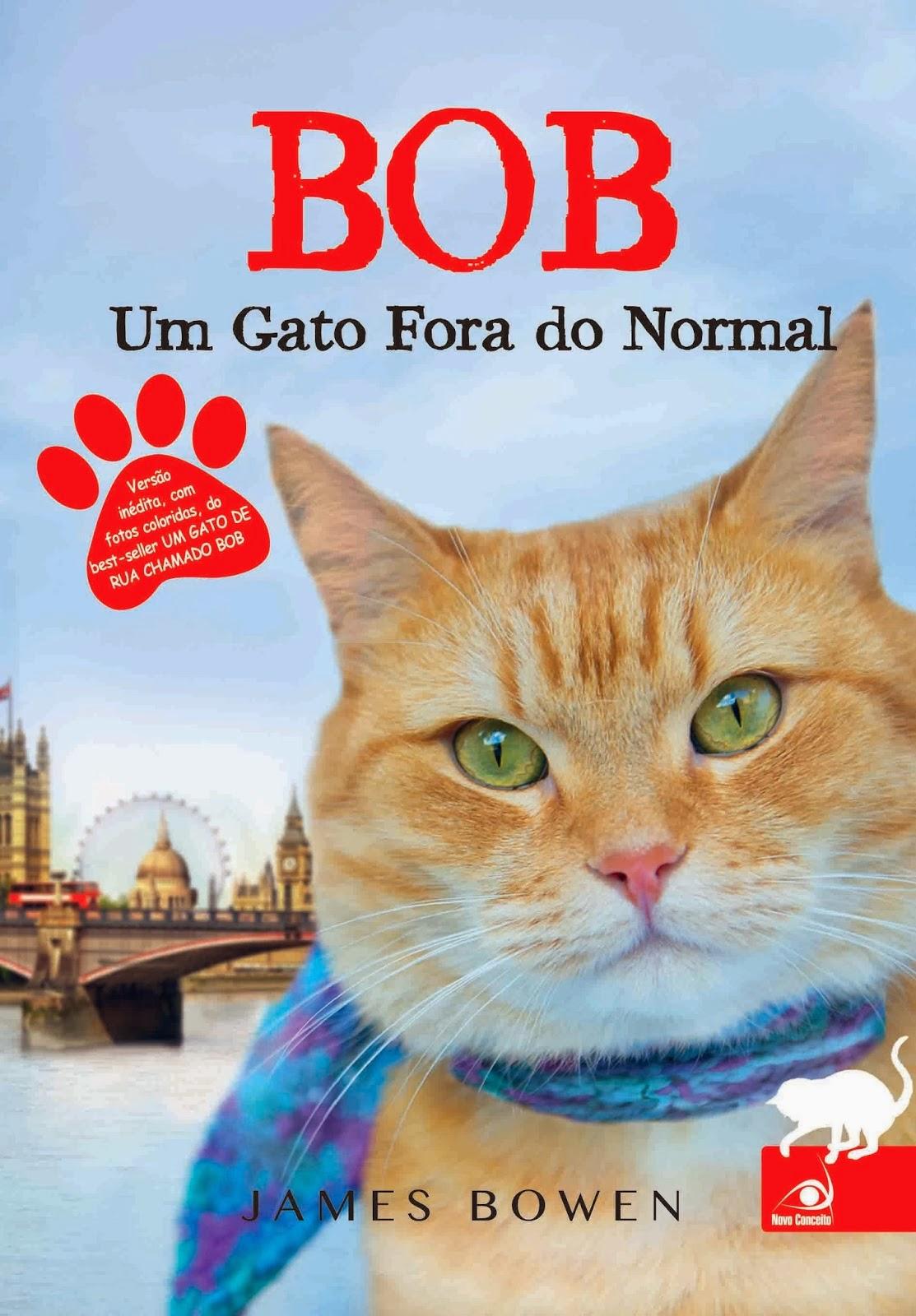http://www.skoob.com.br/livro/374182-bob-um-gato-fora-do-normal