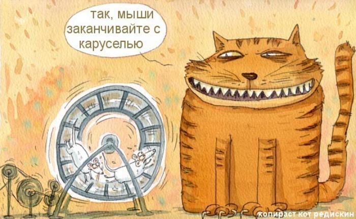 Кот и Мыши на выборах: заканчивайте с каруселью