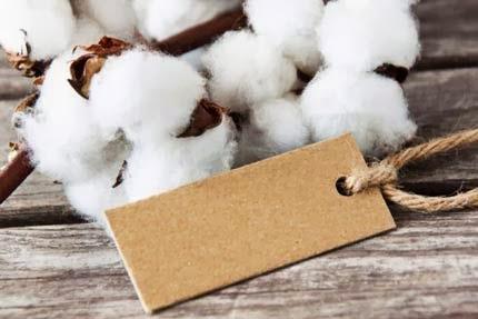Significado das bodas de algodão