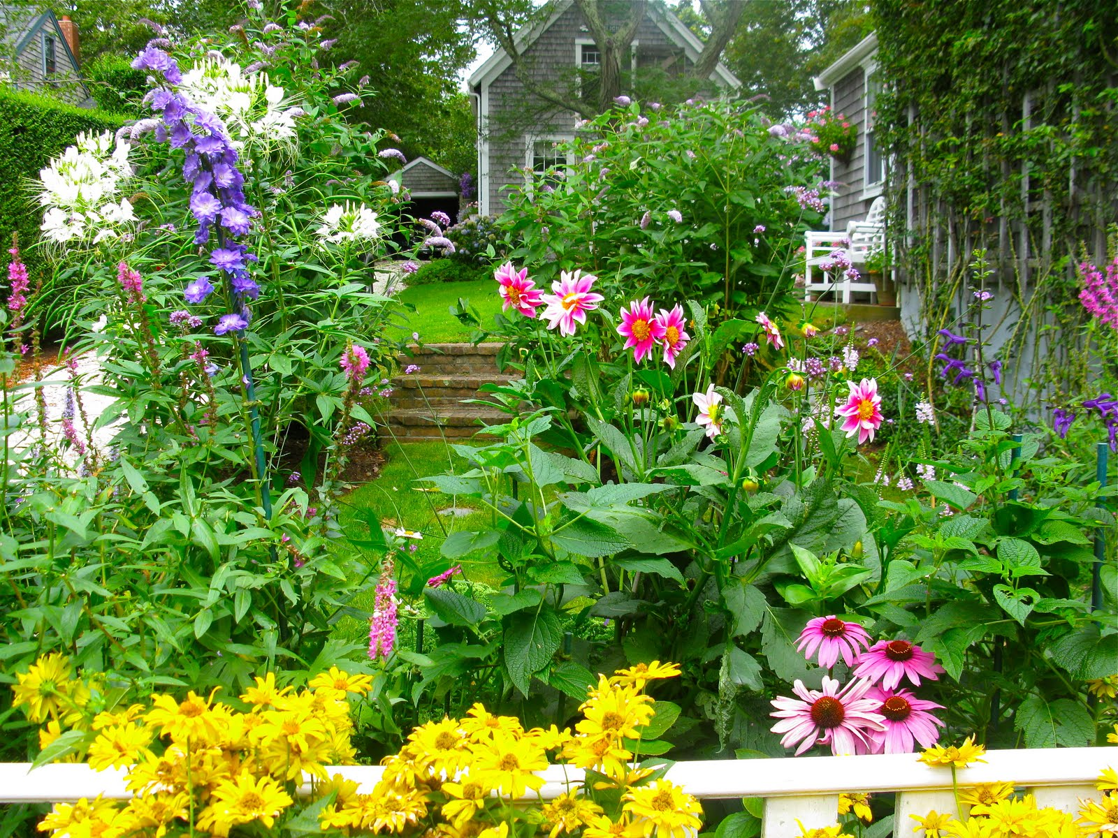 Beau Gorgeous Nantucket Gardens