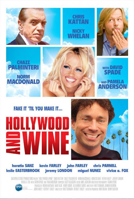 hollywood and wine 2010 brrip
