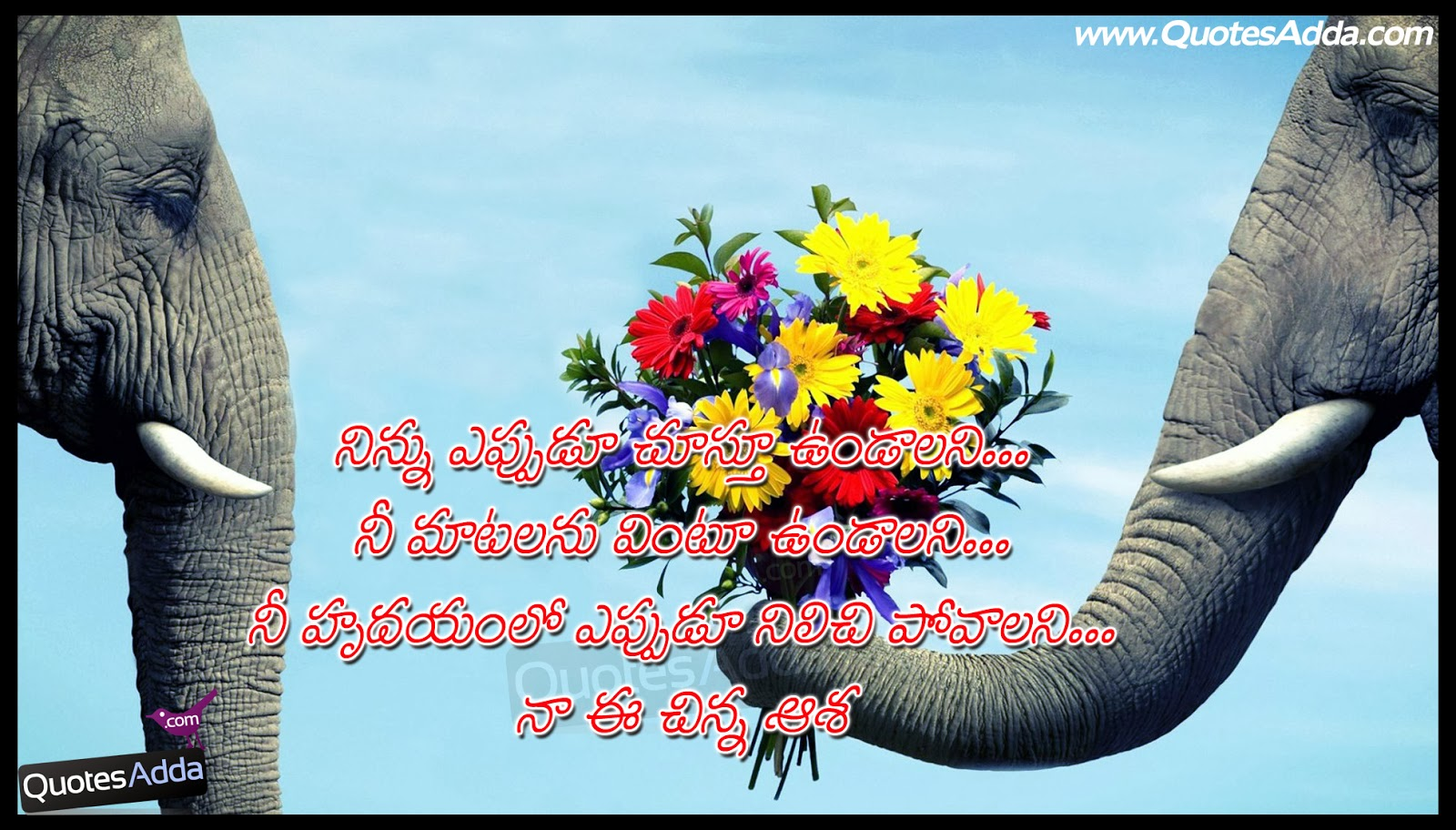 telugu love proposal quotes with wallpapers quotesadda