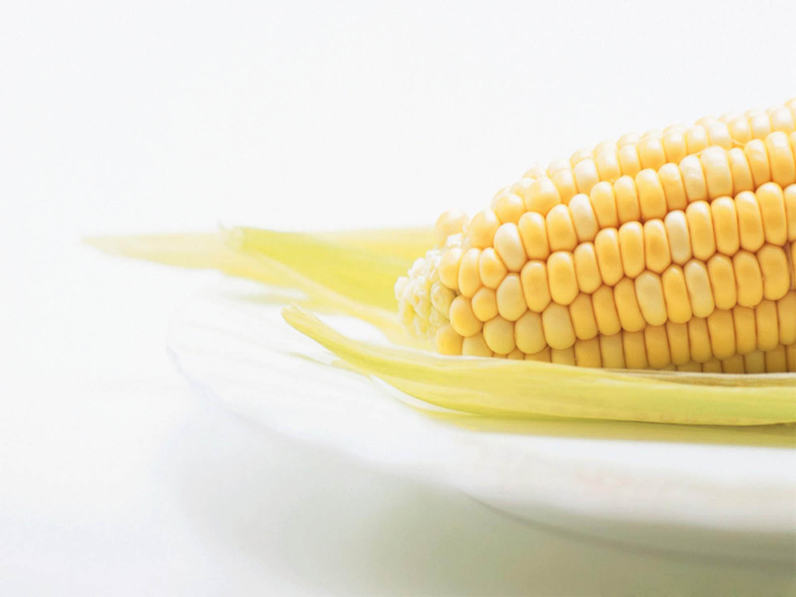 Wallpapers fresh corn for Fresh pictures