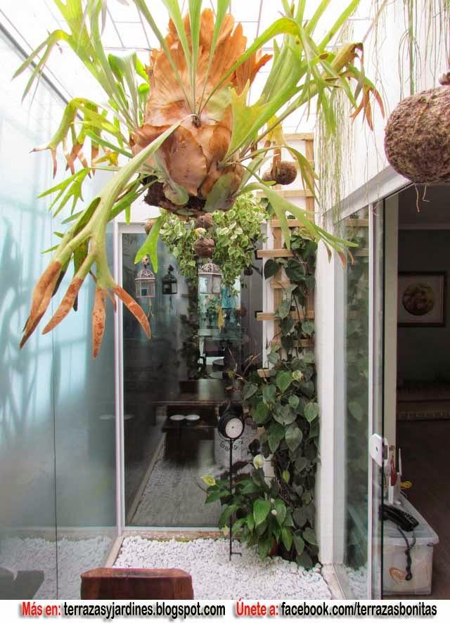 Terrazas y jardines fotos de jardines for Jardines pequenos y baratos