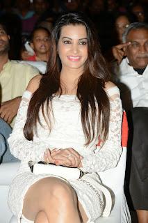 Diksha Panth latest sizzling Pictures 035