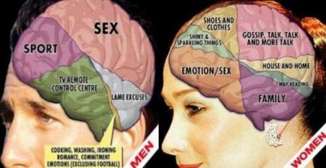 Coba Bandingkan Setuju ga? INI Dia 9 Perbedaan otak Laki laki dan perempuan!