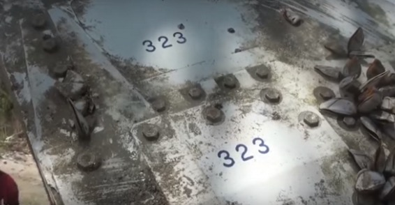 Video Serpihan MH370 ditemui di Thailand