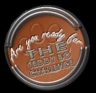 Tedybo challenge
