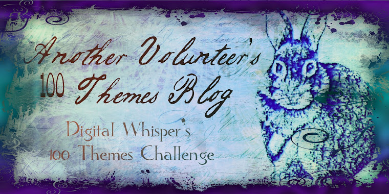 Another Volunteer's 100 Themes Blog