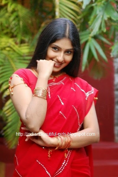 Indian actress monica wedding