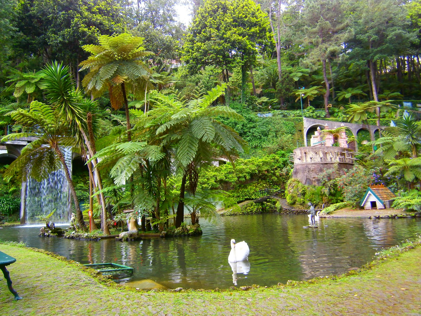 fotos de jardim tropical : fotos de jardim tropical:Jardim Suspenso: Madeira: Jardim Tropical Monte Palace.