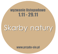 http://blogprzyda-sie.blogspot.com/2015/11/wyzwanie-listopadowe-skarby-natury.html