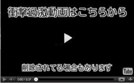 http://tensei.jack-slater.net/