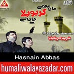 http://www.humaliwalayazadar.com/2014/10/hasnain-abbas-nohay-2015.html