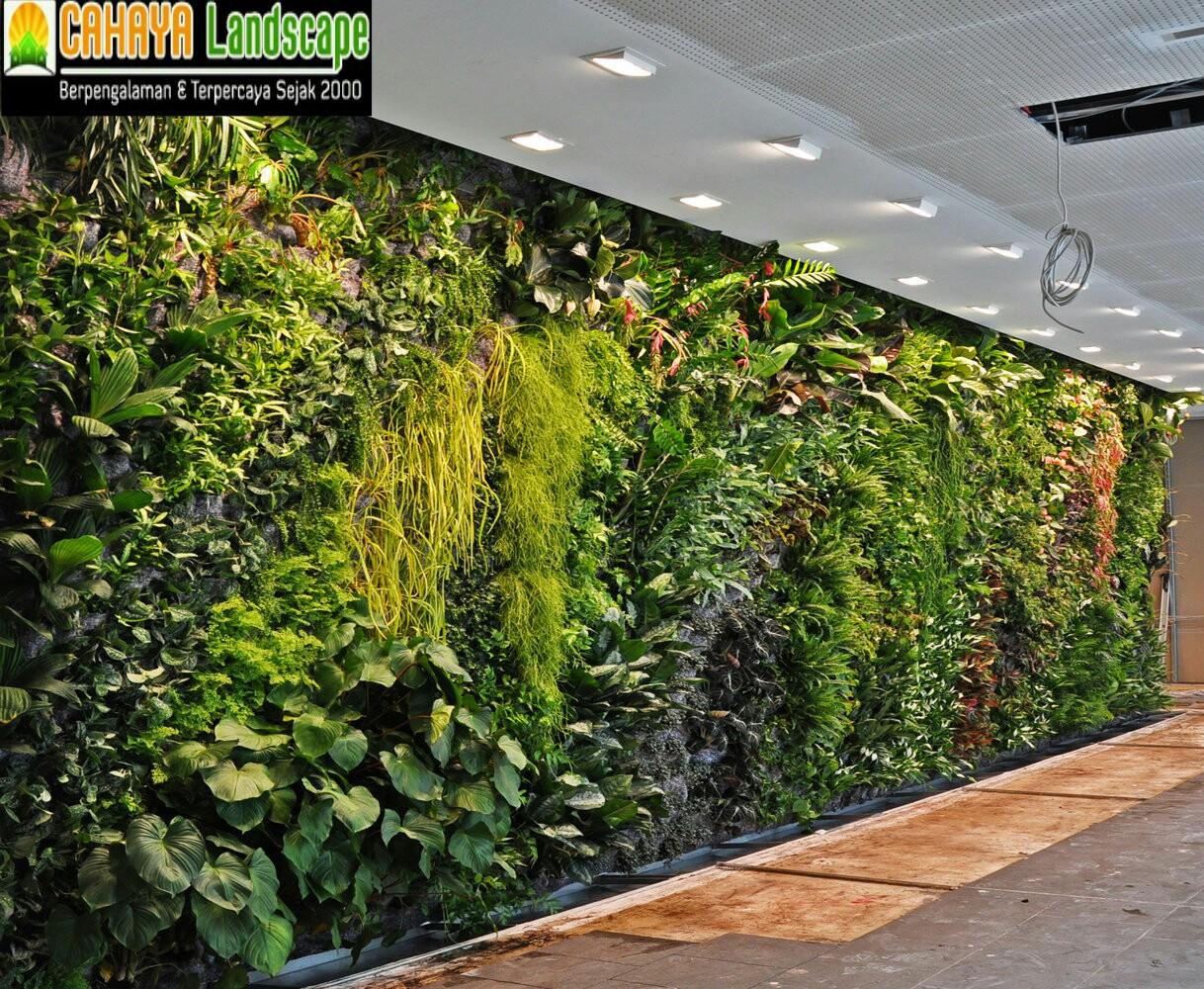 Вертикальное озеленение мастер класс