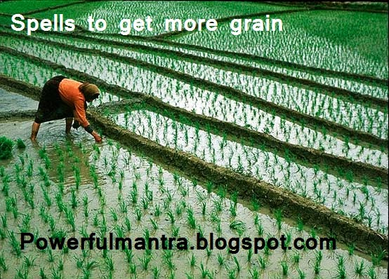 More Grain Cultivation Spell or Tantra,  अधिक अन्न उपजाने वाला मंत्र