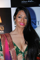Kashmira shah blenders pride hot photos 2012-2