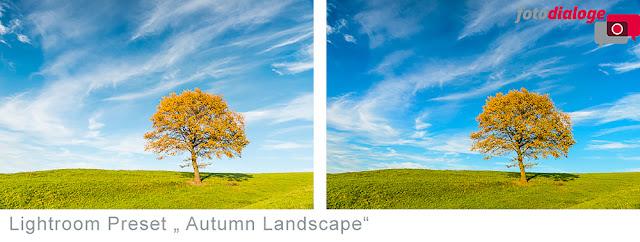 kostenloses herbstliches Lightroom-Preset Landscape