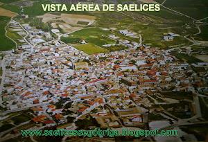VISTA AÉREA DE SAELICES