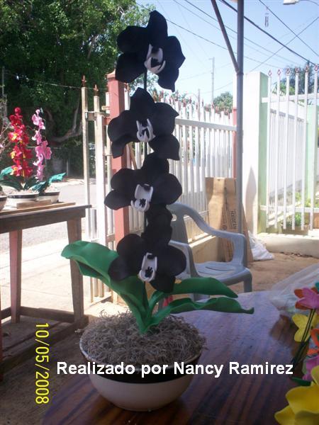 Encantos En Fomis Orquideas Negras