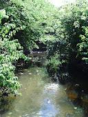Riacho São Pedro - Ibaretama - Ceará
