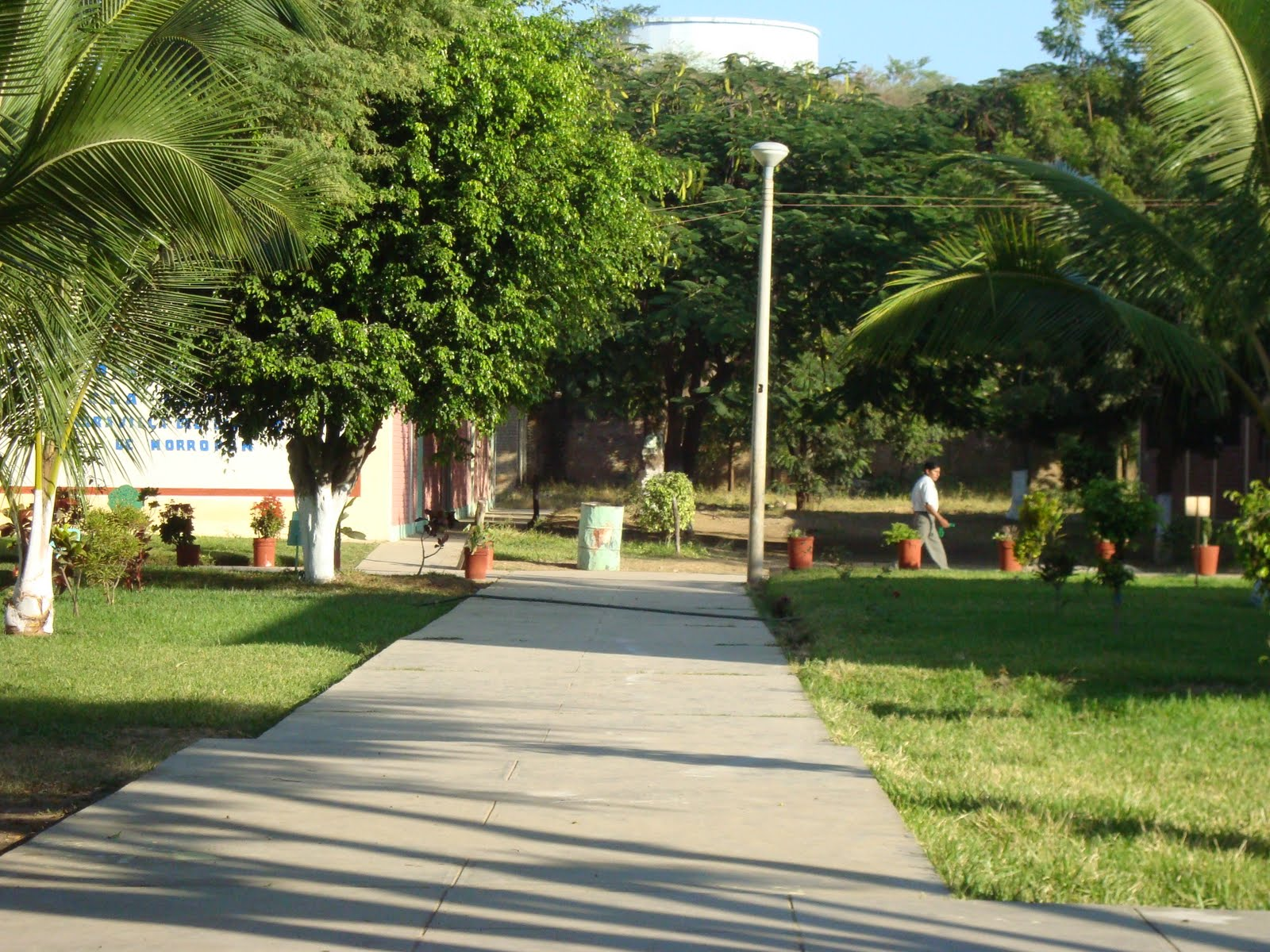 Jardin ecologico amg for Alma de jardin pacheco