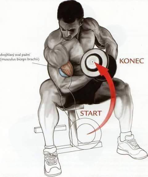 Bodybuilding weight training Exercises 2