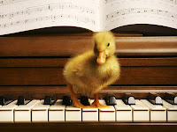 Duck on a Piano Wallpaper