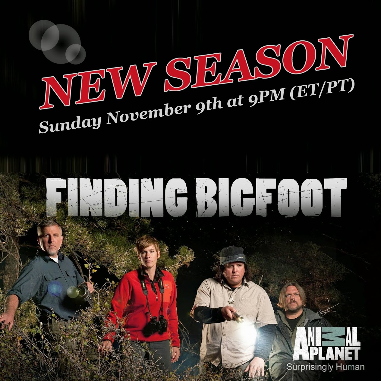 Finding Bigfoot Wallpaper Finding Bigfoot Returns With a