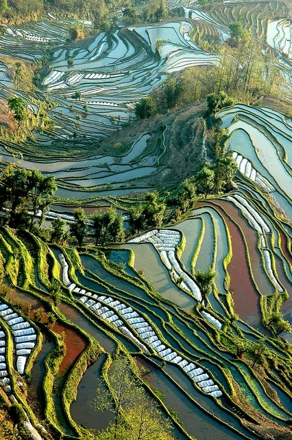 Yuanyang County, CHINA