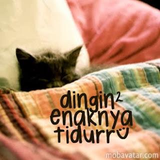 Tidur yang Sehat