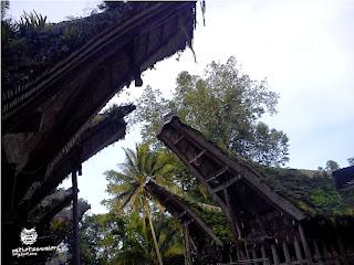 wisata tana toraja, wisata alam dan budaya toraja