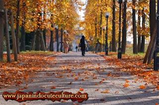 musim gugur romantis jepang