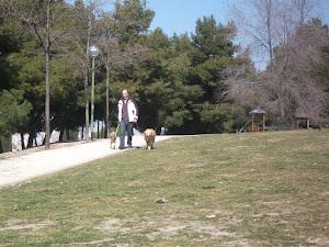 Rafa paseando
