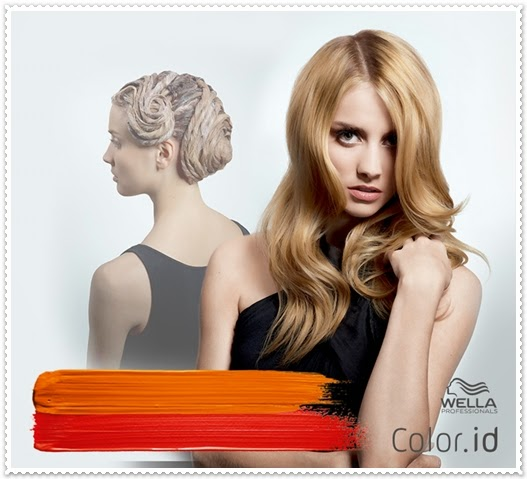 Wella Color.id