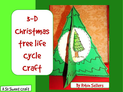 life cycle of a Christmas tree