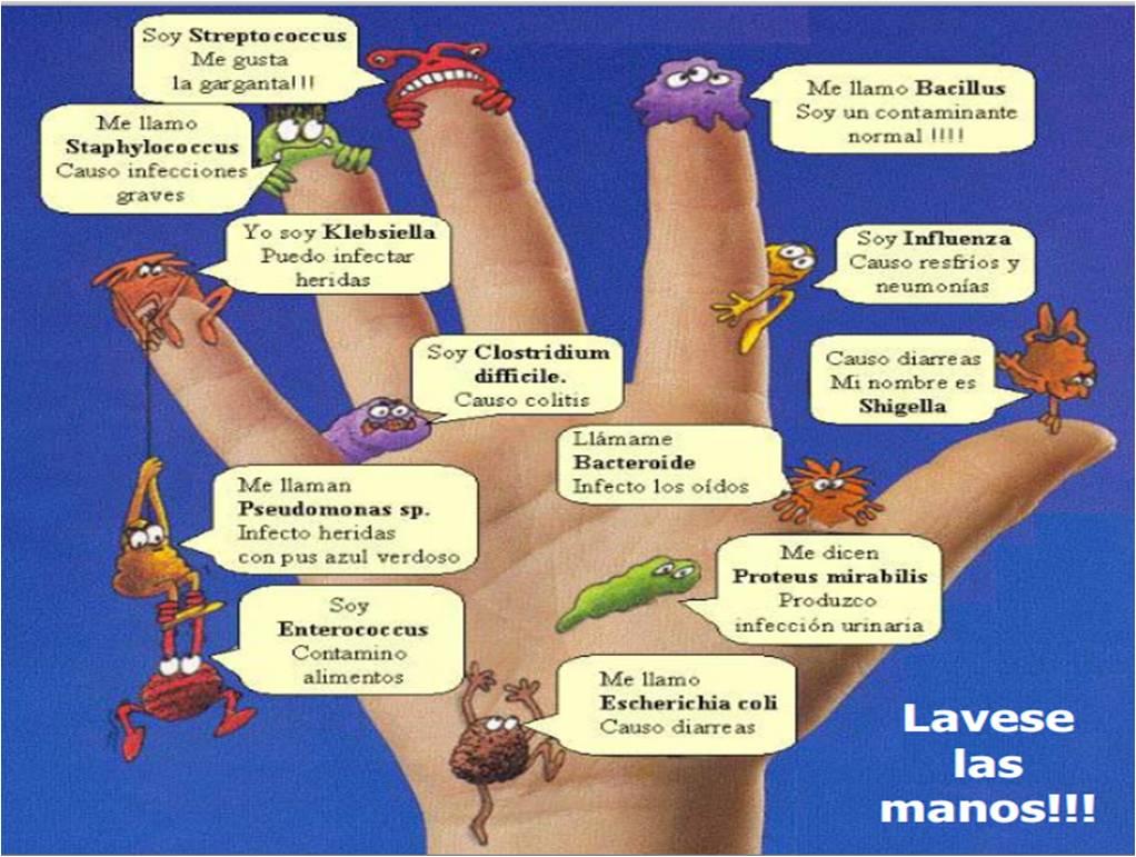 El Lavado De Manos - Lessons - Tes Teach