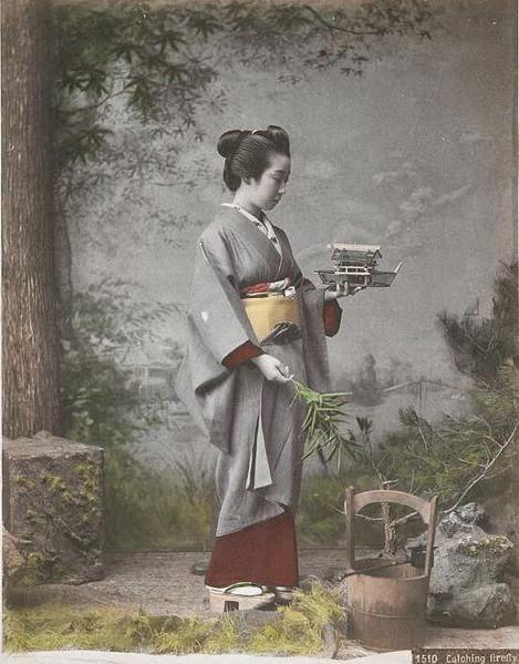 Kajima Seibei, Iwasaki Mineko,Gejsza z Gion, Okres ochronny na czarownice, Carmaniola